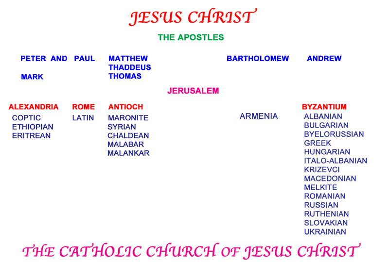 The Eastern Catholic Churches and the Latin Western Church, comprising the universal Catholic Church of Jesus Christ.